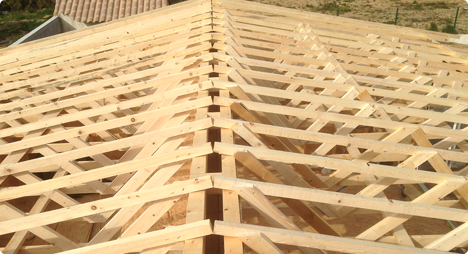 traitement charpente cannes artisan charpentier saint rapha l draguignan. Black Bedroom Furniture Sets. Home Design Ideas